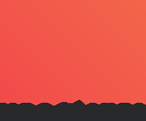 megapixel300png.png